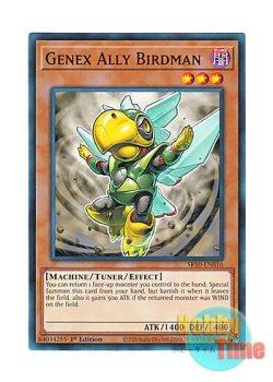画像1: 英語版 SR10-EN016 Genex Ally Birdman A・ジェネクス・バードマン (ノーマル) 1st Edition