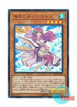 画像1: 日本語版 LVDS-JPA06 海外未発売 海晶乙女パスカルス (ウルトラレア)